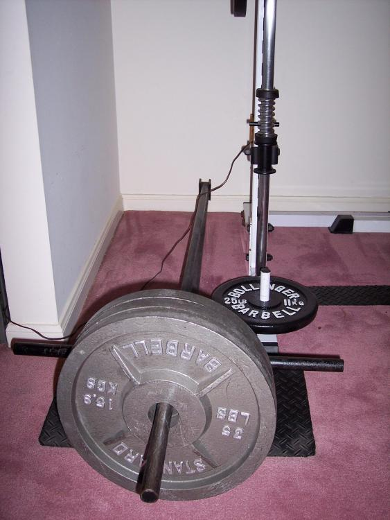16 Pro Maxima T-Bar Rower.jpg